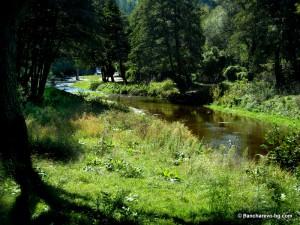 Река Искър в района на Панчарево