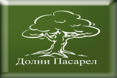 logo pasael1
