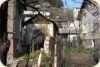 На Лазаровден в Панчарево